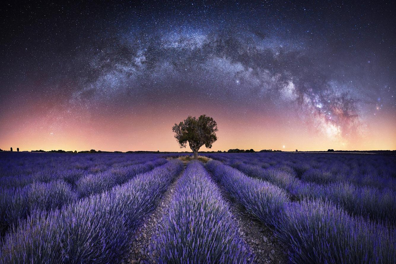 Панорама Млечного Пути над лавандовыми полями в Валенсоле, Франция
