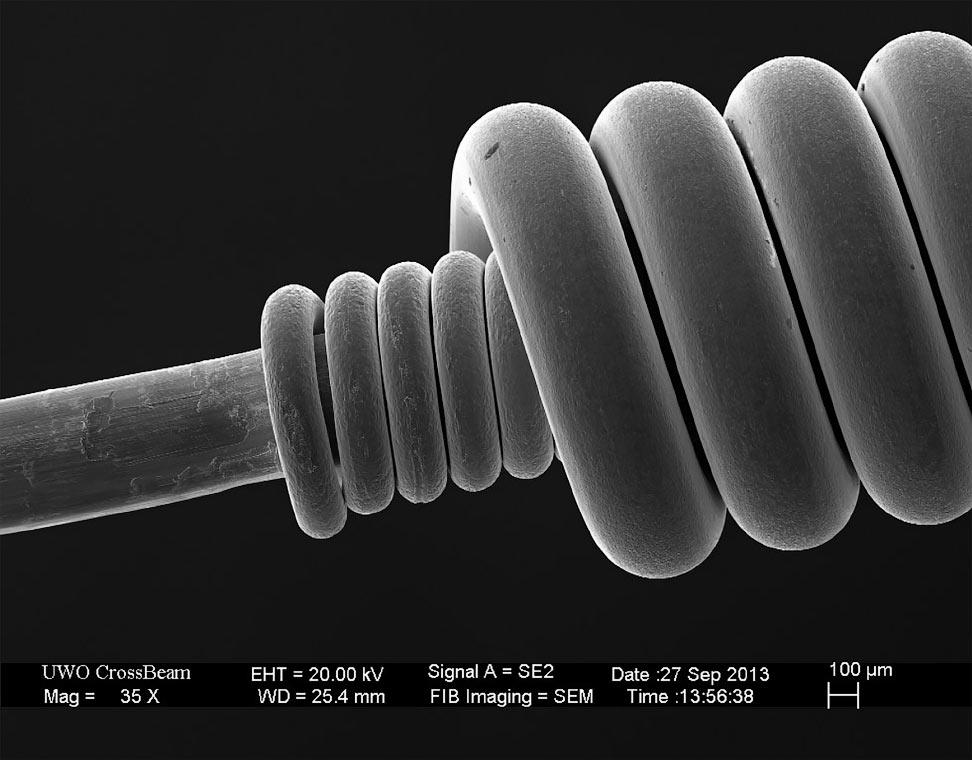 Как выглядят повседневные вещи под микроскопом