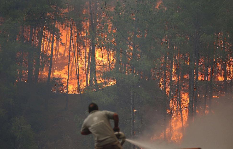 Пожарные борются с лесным пожаром, Анталия, Турция