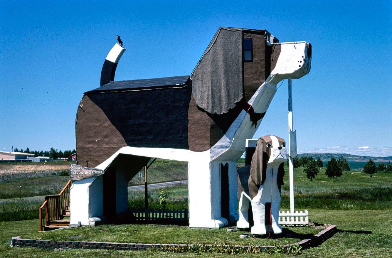 Гостиница Dog Bark Park в Коттонвуде, штат Айдахо, 2004 год