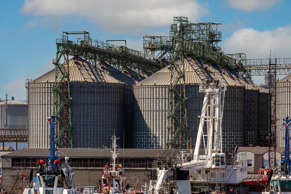 Новороссийский зерновой терминал — один из крупнейших комплексов на Черном море