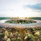 Летающая тарелка или офис Apple — самой дорогой компании в мире