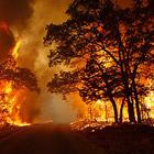 Пожары в Техасе: критическая ситуация