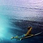 Готовимся к лету: серфинг