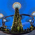 Gardens by the Bay: футуристические прибрежные сады в Сингапуре