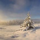 Настоящая зима в Крыму