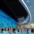 Крупнейший в мире аквариум в ТЦ Dubai Mall