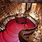 Livraria Lello - один из самых красивых книжных магазинов в мире