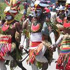 Сотни новых видов растений и животных обнаружены в Папуа-Новой Гвинее
