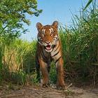 Лучшие фотографии октября 2010 по версии National Geographic