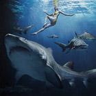 Акулы-убийцы из Египта
