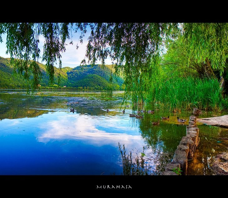 Природа от Muramasa