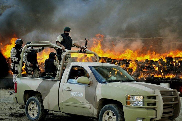В Мексике сожгли 134 тонн марихуаны