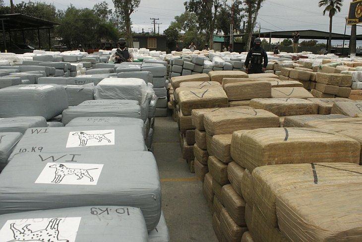 Мексиканские военные сожгли 134 тонны марихуаны