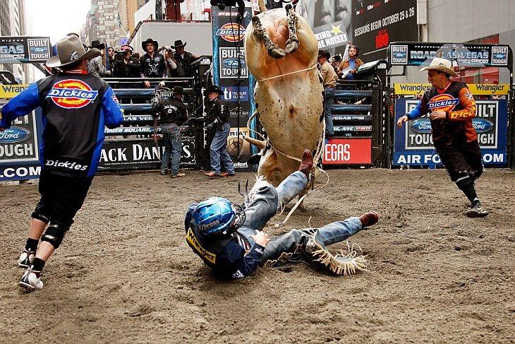 Профессиональный наездник падает вместе с быком