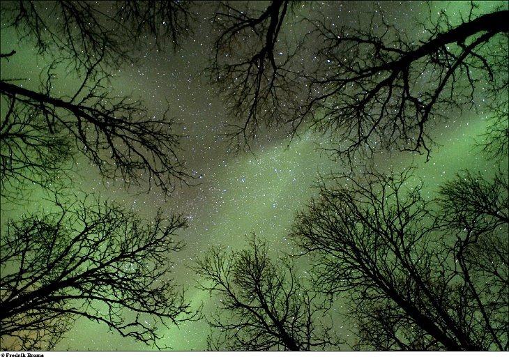Лучшие фотографии в области астрономии 2010