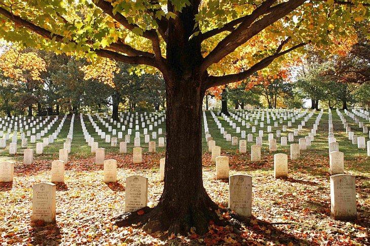 Осенние листья лежат на Арлингтонском национальном кладбище