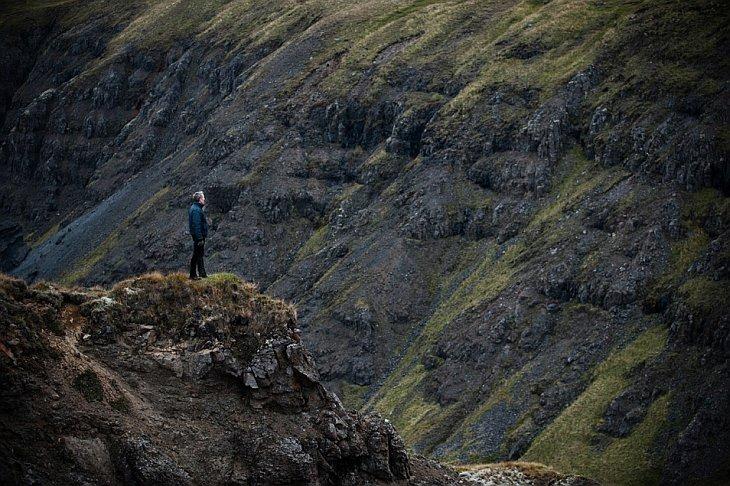 Табун в Исландии