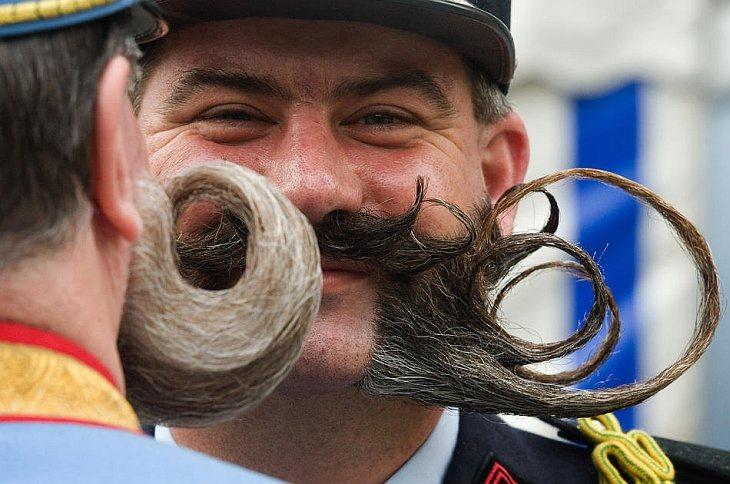 Европейского чемпионата по бородам
