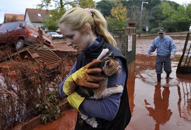 Тунде Эрдели (слева) спасает свою кошку