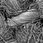 Как выглядят вещи под микроскопом