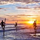 Шри-Ланка. Рыбалка на шесте