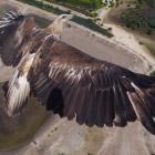 Лучшие фотографии с дронов 2014