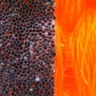 Макромир тканей