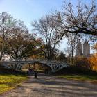 Знаменитый Центральный парк Нью-Йорка