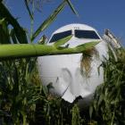 Крупнейшие катастрофы самолетов с участием птиц