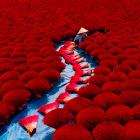 Лучшие фотографии со всего мира от конкурса Agora Awards